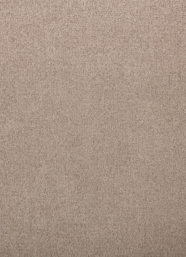 Light Brown Upholstery