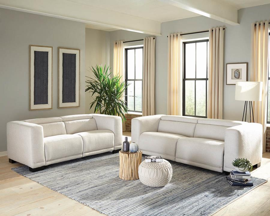 Complete Reclining Loveseat and Sofa